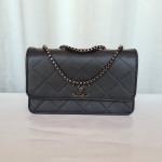 Chanel Ladies Stylish Bags QB00153