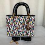 Dior Ladies Hand Bag Multi Color QB00240